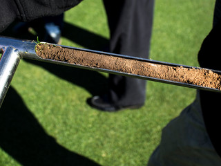 Taking the Guesswork Out of Turf Transitions in Arizona