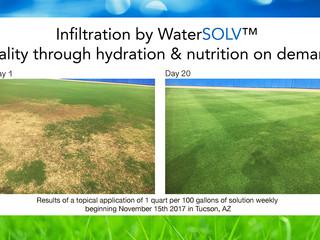 The WaterSOLV Custom Turf Program