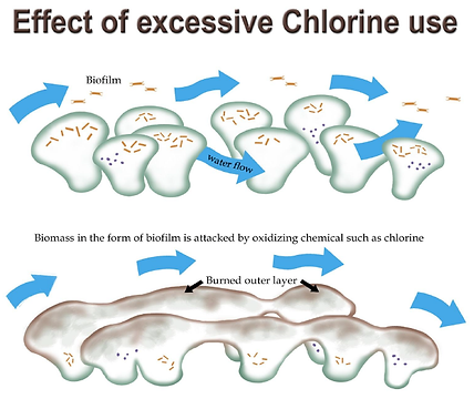 excessive chlorine use.png