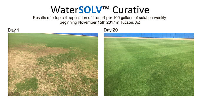 WaterSOLV Curative - Progressive Turf Im