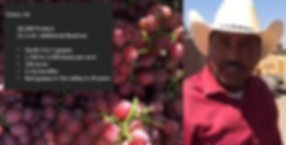 Tulare Grapes.png
