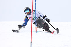alpineskiing_top.jpg