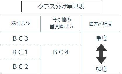 boccia_table.JPG
