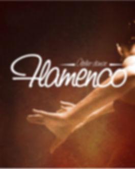 atelier danse flamenco Bourges