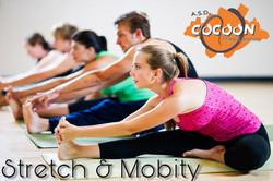 Stretch & Mobility