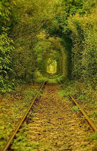 tunelul iubirii3110.jpg