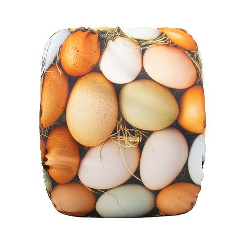 Round 15 Eggs RERUN