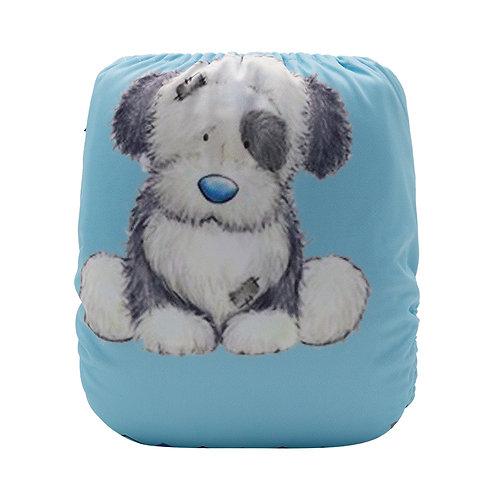 Round 15 Shelby Sheepdog