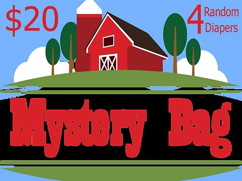 Newborn Mystery Bag