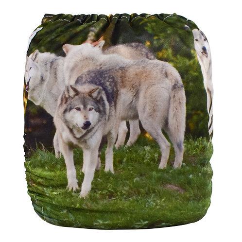Round 14 Wolf Pack