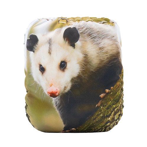 Round 15 Opie the Possum