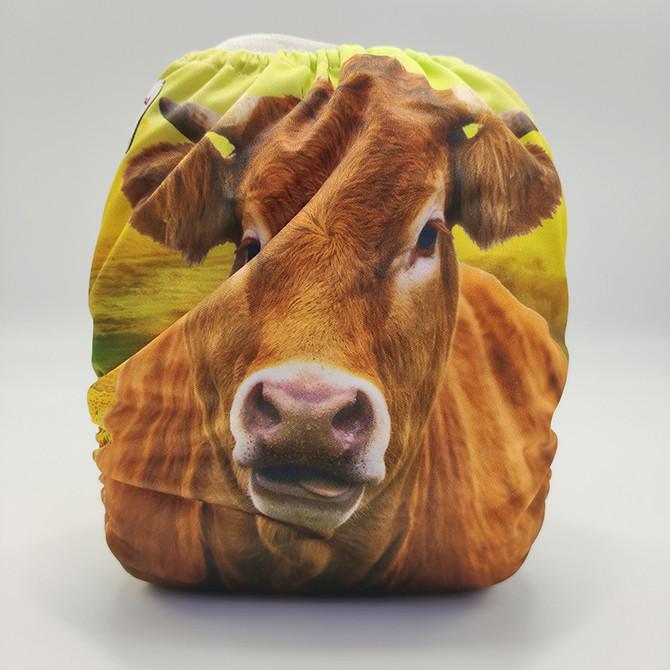 Sunflower Cow