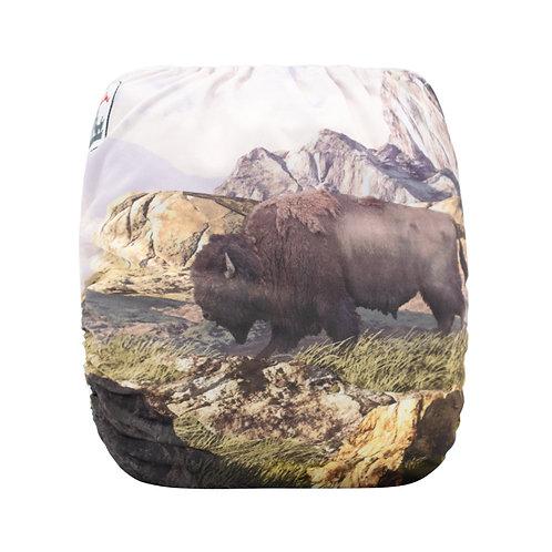 Round 15 Bison Peaks