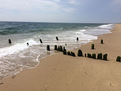Herring Cove Beach, Cape Cod, MA 1.JPG