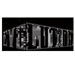 Team Evolution-copy.png