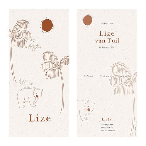 Geboortekaartje Lize