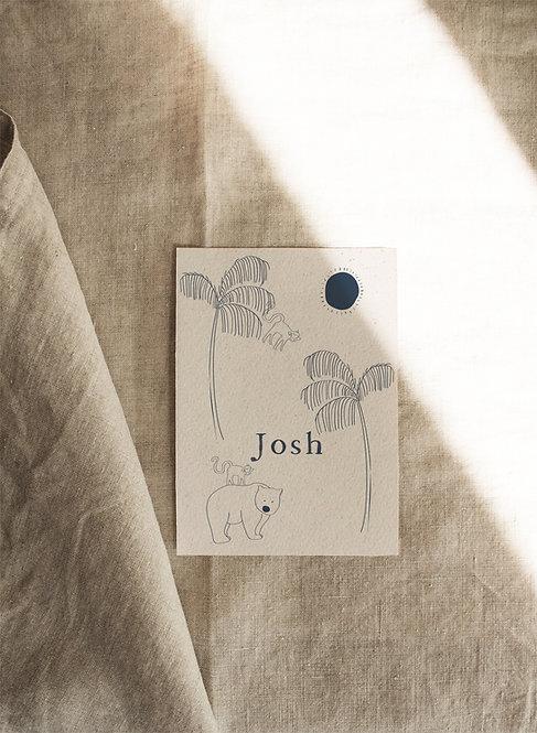 Geboortekaartje Josh