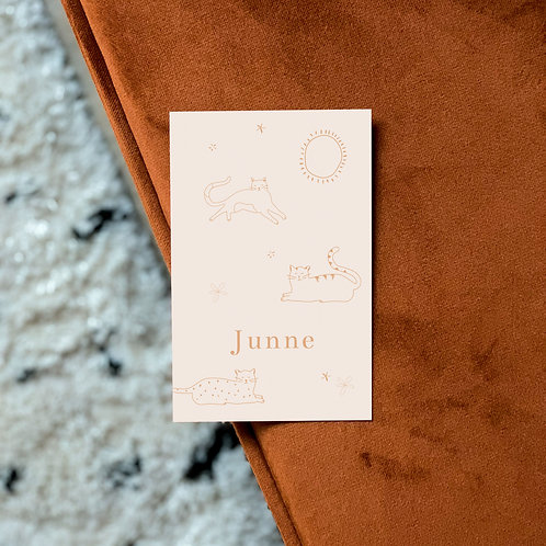Geboortekaartje Junne