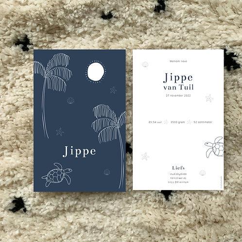 Geboortekaartje Jippe