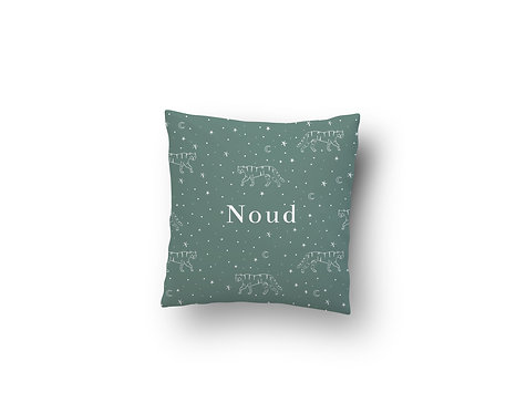 Kussen Noud