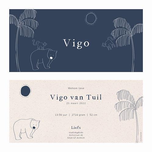 Geboortekaartje Vigo