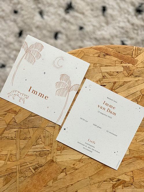 Geboortekaartje Imme