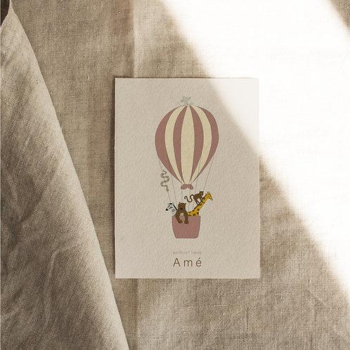 Geboortekaartje Amé