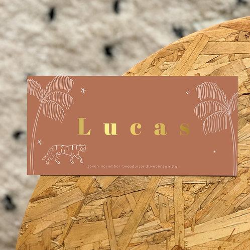 Geboortekaartje Lucas rust