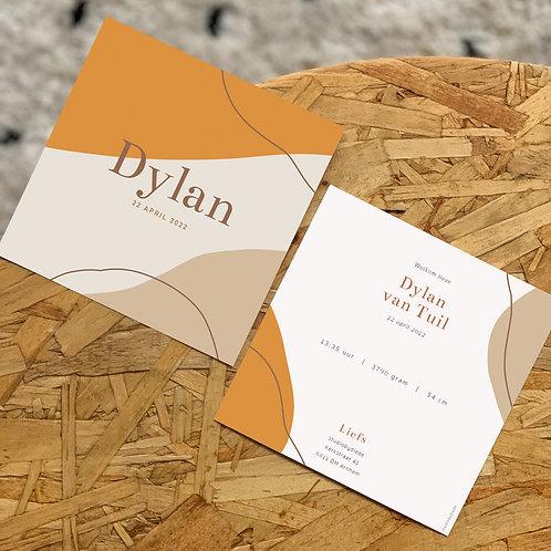Geboortekaartje Dylan