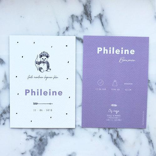 Geboortekaartje Phileine