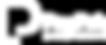 PayPak-logo copy.png