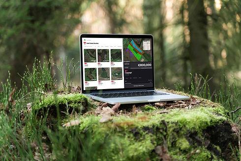 ForestBidder_mockup_04-web.jpg