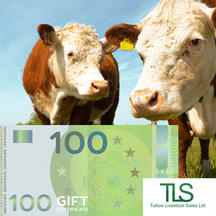€100 Voucher for Tullow Mart