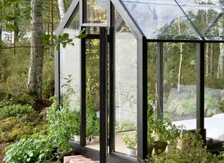 Life in the Glass House