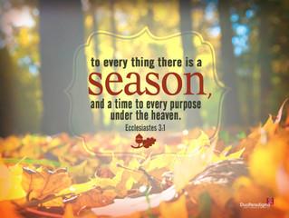 Savor Your Season, Part 2