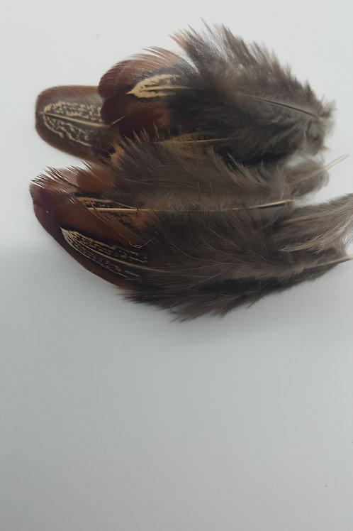50 Natural Cock Pheasant Shoulder Feathers