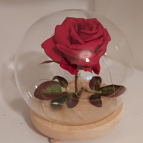Rose glass cloche dome with lights