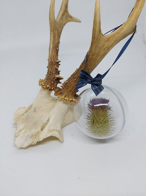 Scottish Thistle bauble 6cm