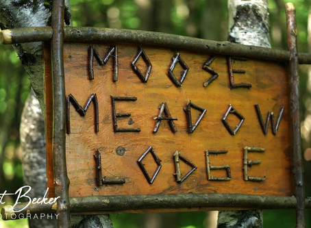 Moose Meadow Lodge & Tree house weddings