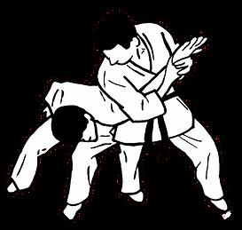WJJF - Ju Jitsu Senior