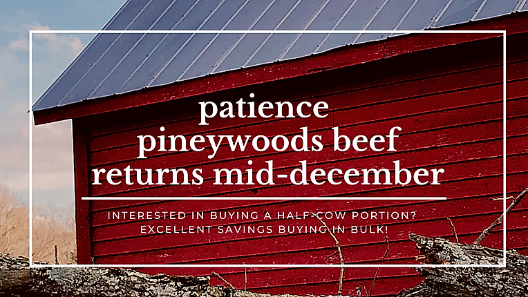 PFB_PineywoodsBeef.png