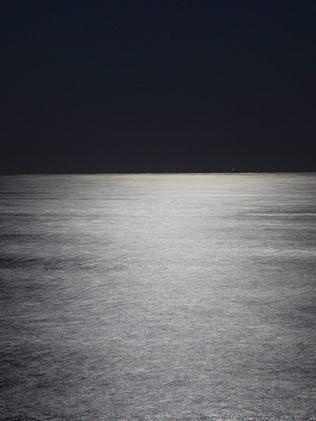 Australian Nature Images - Flora and Fauna - A Moonlit Ocean - Sydney Australia