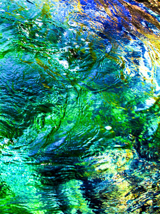 Australian Nature Images - Flora and Fauna - Abstract Colours Within Water