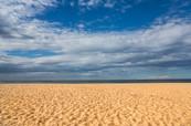 Australia's Flora and Fauna - A secluded beach set under a blue sky. Central Coast, Australia