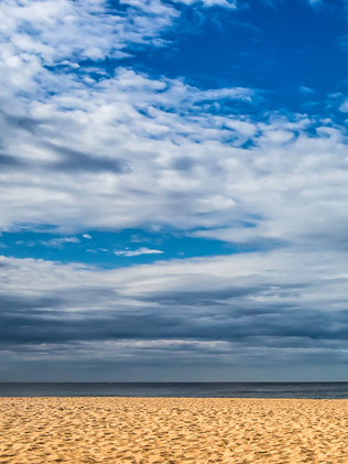 Australian Nature Images - Flora and Fauna - A deserted beach