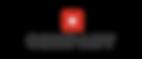 Logo_Company_X-online version.png