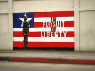 In Pursuit of Liberty