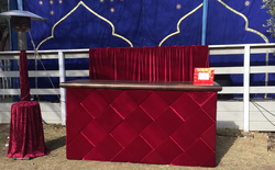 Red Velvet Paneled Bar