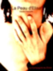 affiche La peau d'Elisa(1).jpg