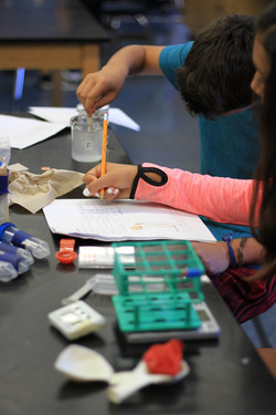 Be a Scientist _ Martin Luther King Jr Middle School (5)